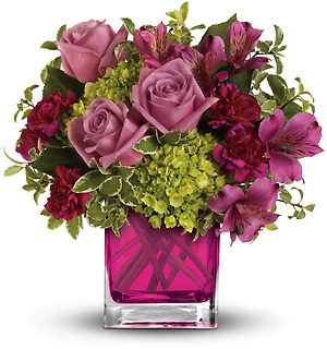 Splendid Surprise