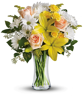 Daisies and Sunbeams
