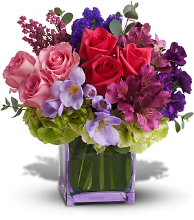 Exquisite Beauty